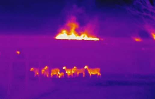 Mida tähendavad värvid termograafias? Kas need on kõigi mudelite jaoks ühesugused? - 6. mai 2021